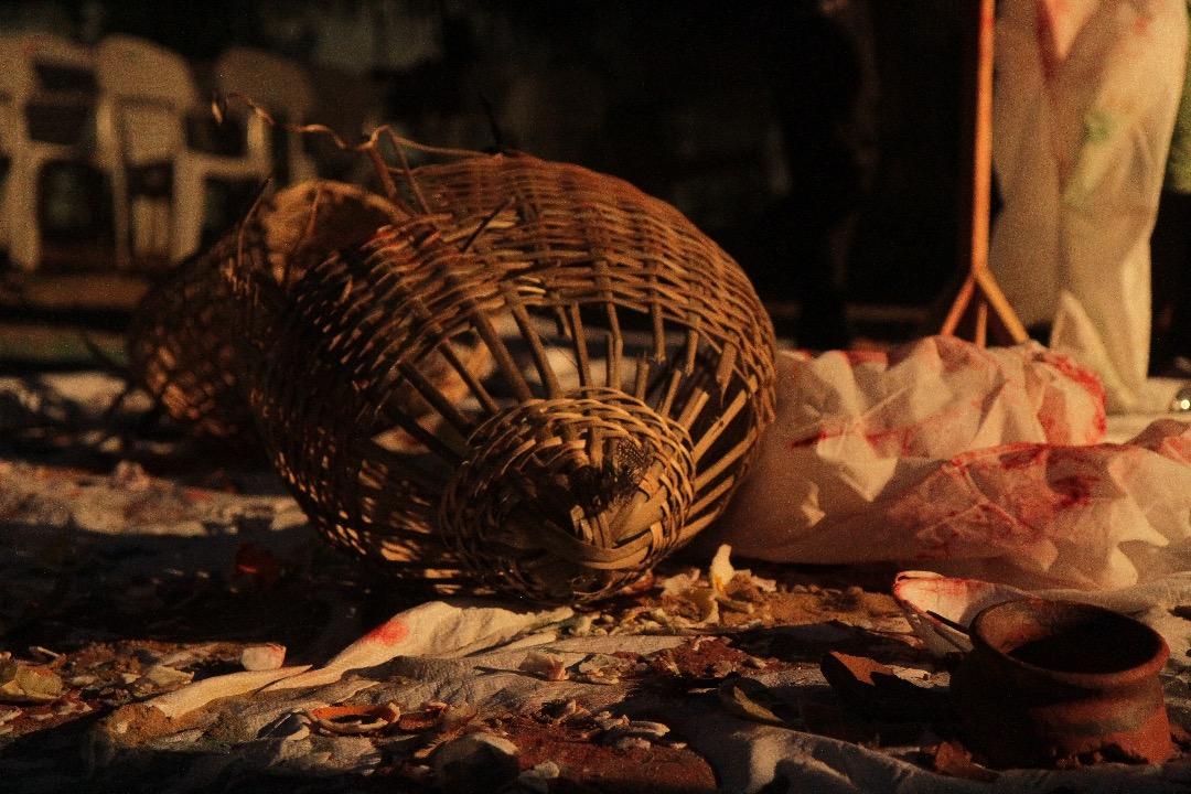 Performance,Thaís Di Marco, « Le piège », en collaboration avec Daniel Ahifon.
